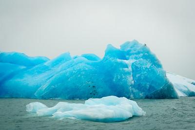 Icebergs on Lake Argentino
