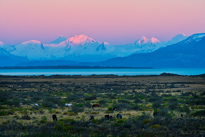 Dawn Light on Castle Range, Patagonia