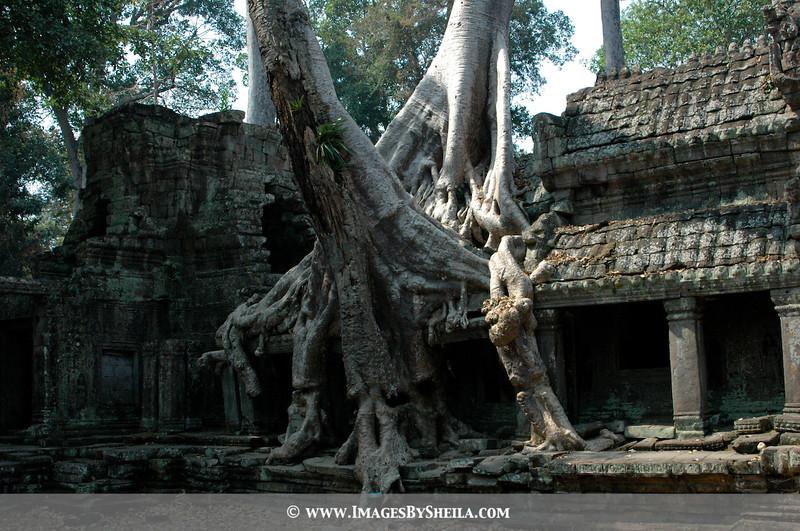 Bayon Temple (Angkor Wat, Cambodia)