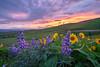Sunset Sky Over Columbia Hills