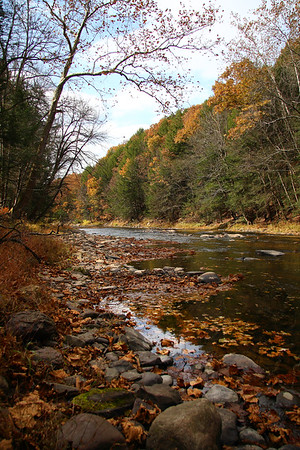 IMG#2617 Huntingon Creek in Fishing Creek Township, Columbia county, Pennsylvania. October 2009