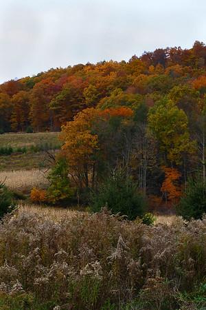 IMG#2517 Montour county, Pennsylvania October 2009