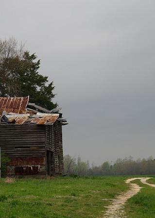 IMG#984 Once Upon a Farm-North Carolina