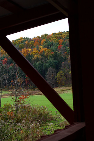 IMG#2543 View from the window inside Patterson Bridge, Columbia county, Pennsylvania. October 2009