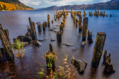 Wooden Pier Pilings at Loch Ness, Socttish Highlands