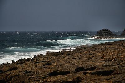"IMG#1000 No ""Sun Bathers"" here on the western end of Aruba-2010"