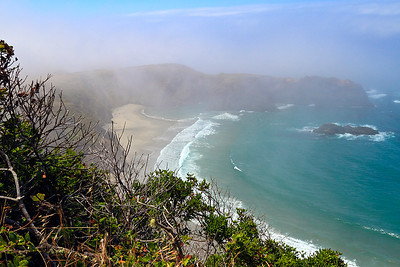 IMG#2940  Northern California coastline...still cool, misty and foggy by 1pm in the afternoon.