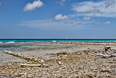 View of the undeveloped, rocky front of De Palm Island...Aruba 2014