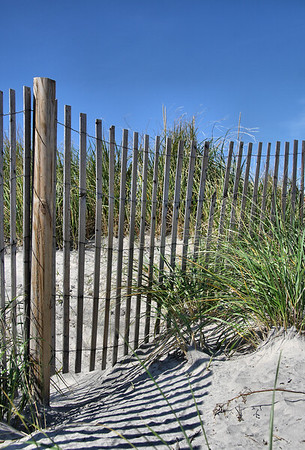 IMG#1467 Fencing guides visitors through the dunes at a beach in Wildwood, New Jersey.