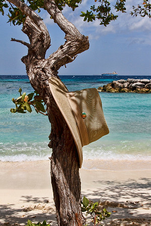 Anywhere you hang your hat is gorgeous in Aruba...! De Palm island, Aruba 2014