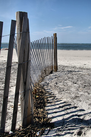 IMG#1476 Fencing collects seaweed and vegetation on a beach in Wildwood, New Jersey .