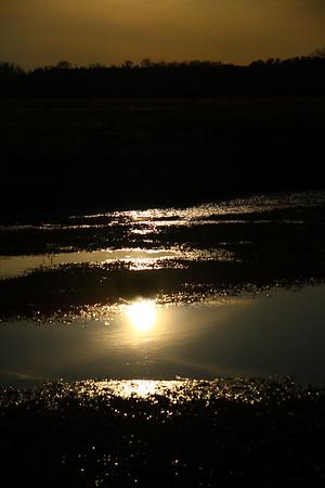 IMG#7032 Creek Sunset-North Carolina