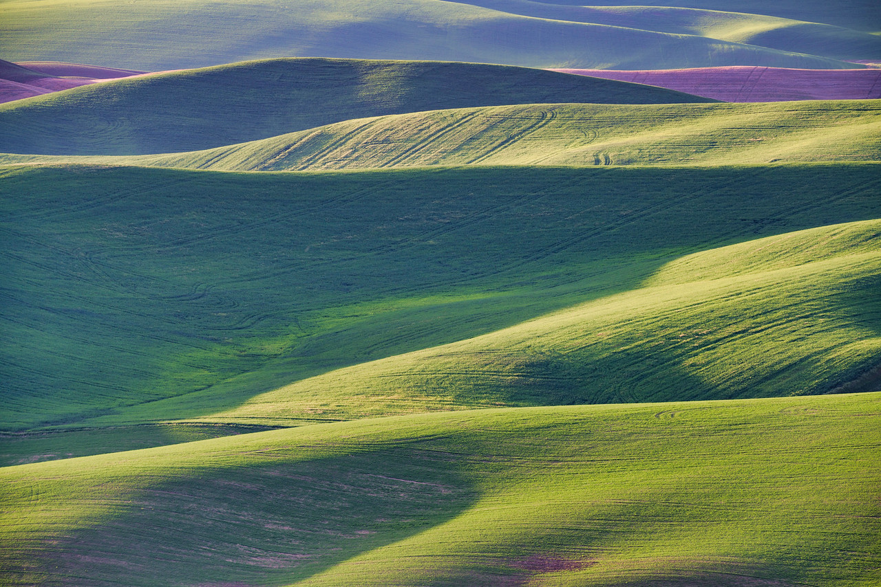 Hills of the Palouse
