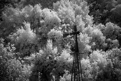 Old Windmill, Big Sur