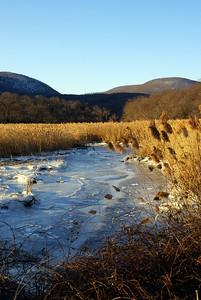 Tidal Ice