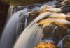 Dunlop Falls