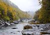 Gauley River Photo