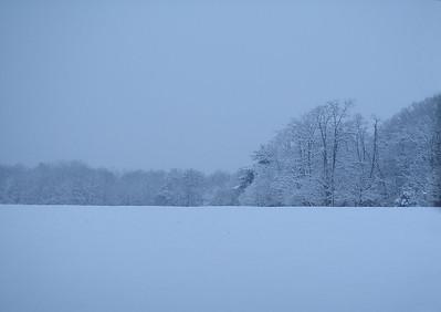 IMG#875 Winter 2008-New Jersey
