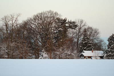 IMG#5489 Early Morning Snow Covered Field  New Jersey February 11, 2010