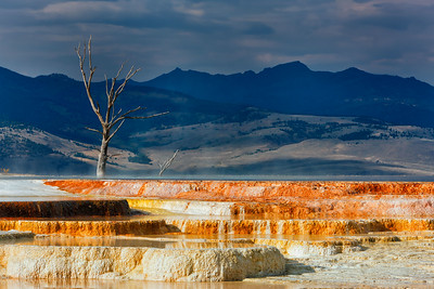 Minerva Terrace at Mammoth Hot Springs, Yellowstone National Park, Wyoming, USA.