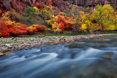Virgin River and Fall Color