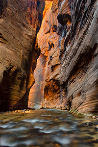 The Virgin River flows through the steep sandstone walls of Wall Street, The Narrows, Zion National Park, Utah, USA.
