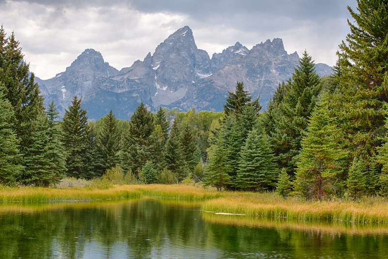 Schwabacher landing in Grand Teton NP. One of the most scenic spots in the park.