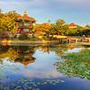 Pagoda Reflections