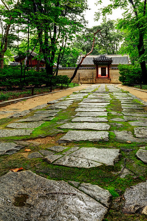 The Spirit Trail
