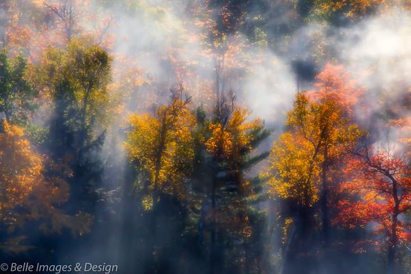 Fall Fire