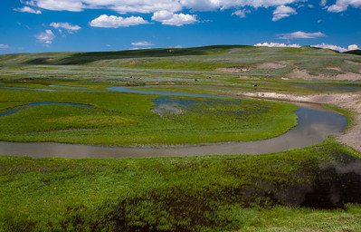 Trout Creek Prairie, Yellowstone NP