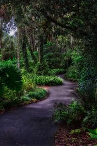 Bok Path