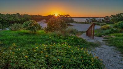 Sunrise Composition