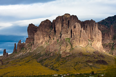 Poppies on Flat Irons base, Superstition Mountain