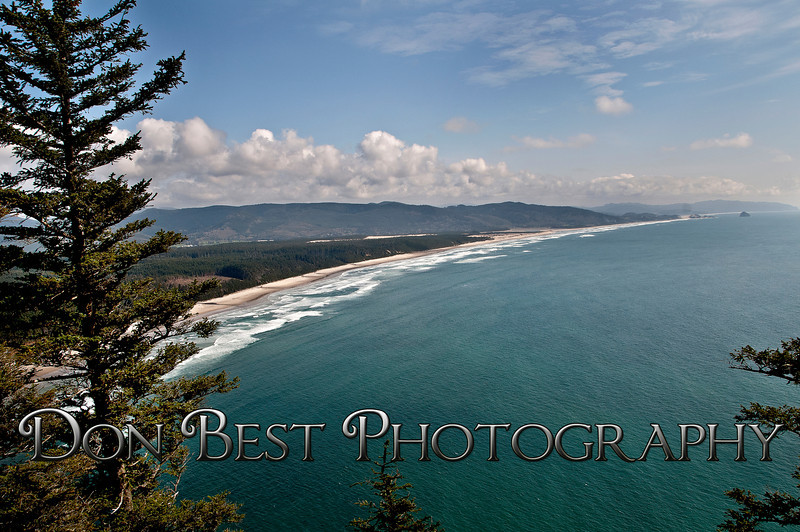 Cape Lookout looking South #3616