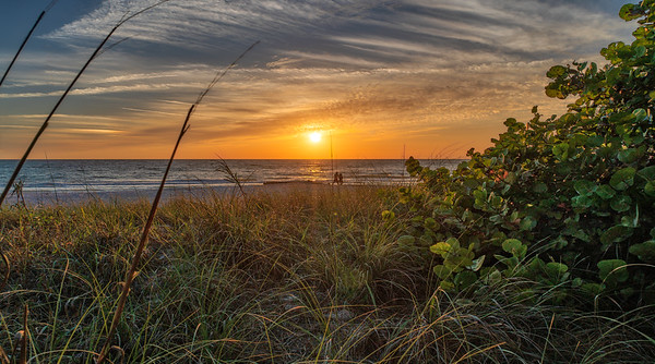 Lucky Scene at the Beach