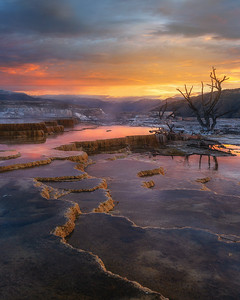 Mammoth Hot Springs, Yellowstone National Park,