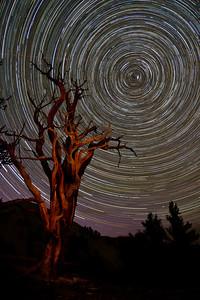Star Swirls