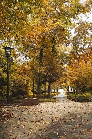 Just a beautiful fall day...