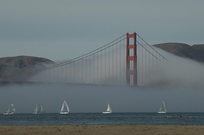 At a glance from Chrissy Field, San Francisco, California