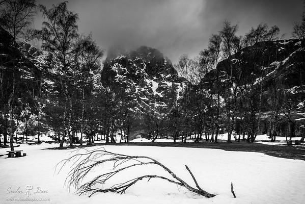 Ruthless Winter