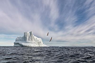 Iceberg from Greenland