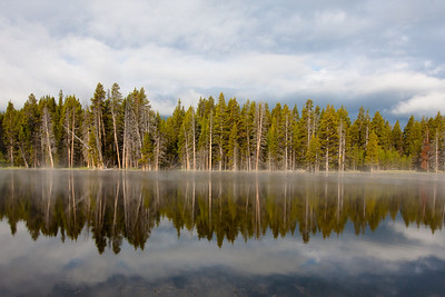 Morning Reflection, Yellowstone NP