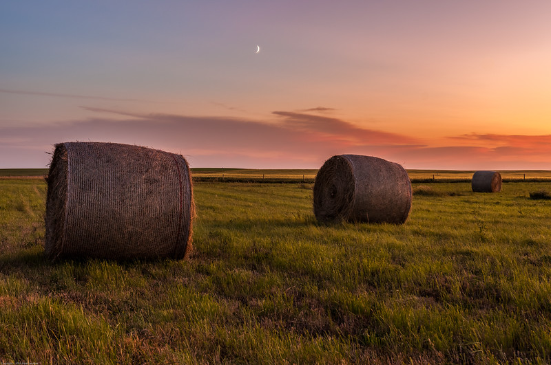 Bales and Crescent Moon