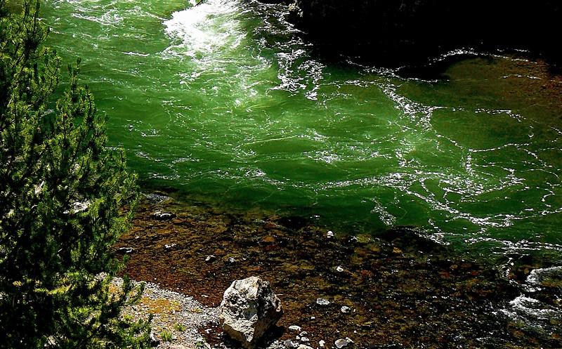 Firehole River - Yellowstone