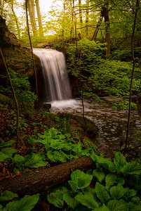 Crown Hill Falls | Ohio