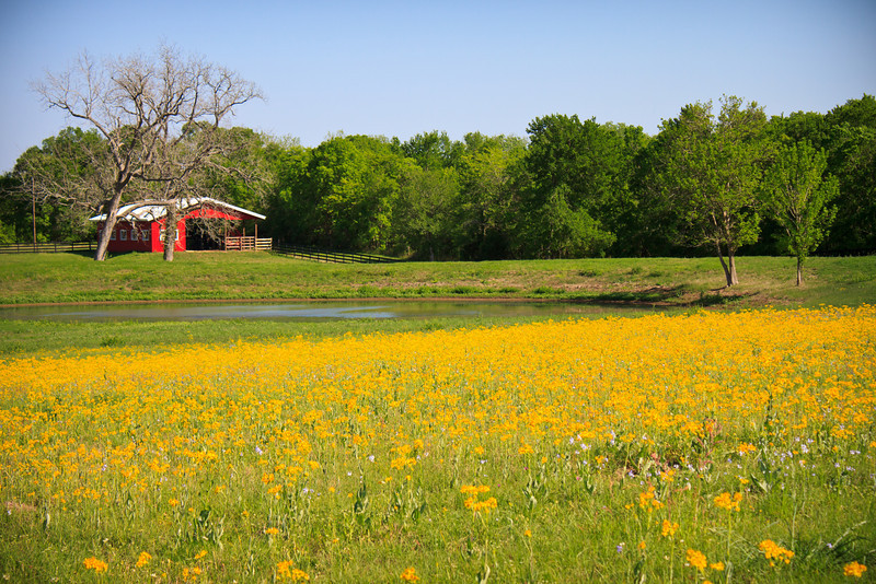Ranch near Navasota, TX