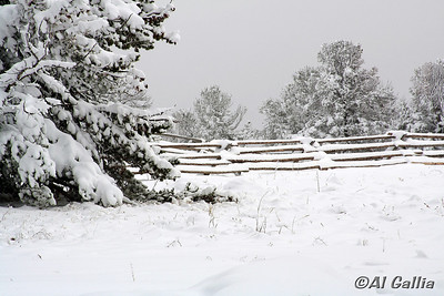 "©Al Gallia; ""Winter Beauty""; Wyoming...I-80W summit at Lincoln Memorial Rest Area."