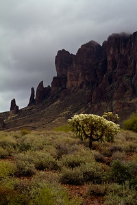Superstition Mountain in cloud w/ Cholla