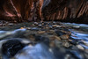 The Narrows at Zion National Park - 1